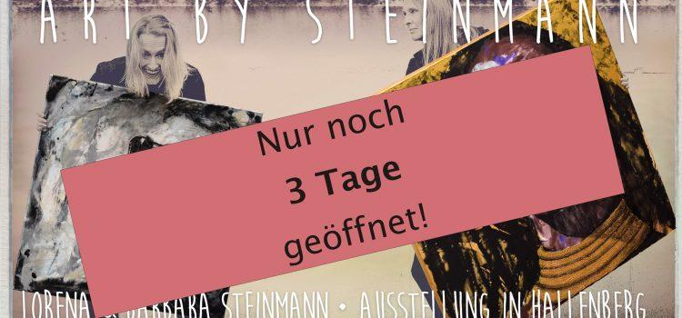 """Ausstellung """"Art by Steinmann"""" noch 3 mal geöffnet"""